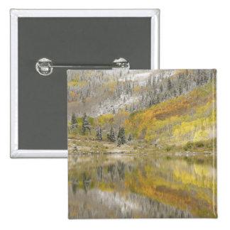 USA, Colorado, White River National Forest, 2 Button