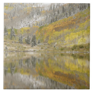 USA, Colorado, White River National Forest, 2 Ceramic Tile