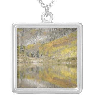 USA, Colorado, White River National Forest, 2 Square Pendant Necklace