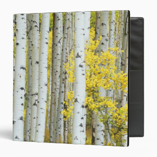 USA, Colorado, White River National Forest, 3 Ring Binder