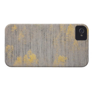USA, Colorado, White River National Forest. Case-Mate iPhone 4 Case