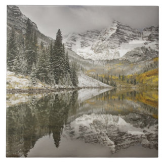 USA, Colorado, White River National Forest, Tile