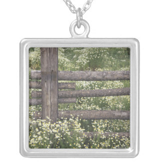 USA, Colorado, Wild Chamomile around log fence Silver Plated Necklace
