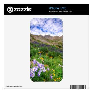 USA, Colorado. Wildflowers In American Basin Skin For iPhone 4
