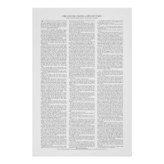USA Constitution Poster