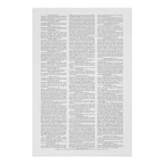 USA Constitutional Amendments Poster