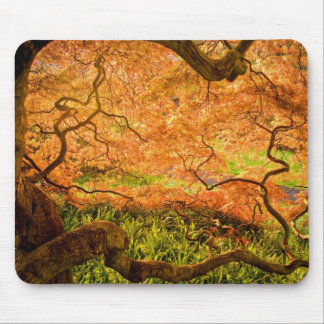 USA, Delaware, Wilmington. Japanese maple Mouse Pad