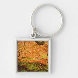 USA, Delaware, Wilmington. Japanese maple Silver-Colored Square Keychain