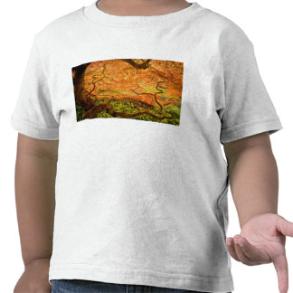 USA, Delaware, Wilmington. Japanese maple T Shirt