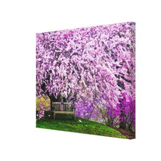 USA, Delaware, Wilmington. Wooden bench under Canvas Prints