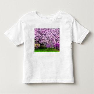 USA, Delaware, Wilmington. Wooden bench under Toddler T-shirt