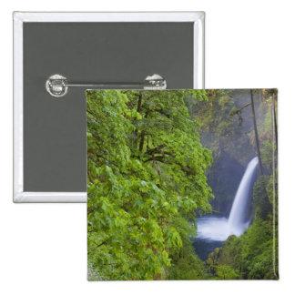 USA, Eagle Creek, Columbia Gorge, Oregon. 2 2 Inch Square Button