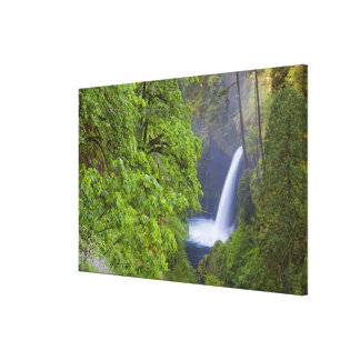 USA, Eagle Creek, Columbia Gorge, Oregon. 2 Canvas Print