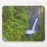 USA, Eagle Creek, Columbia Gorge, Oregon. 2 Mouse Pads