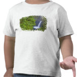 USA, Eagle Creek, Columbia Gorge, Oregon. 2 Shirts