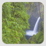 USA, Eagle Creek, Columbia Gorge, Oregon. 2 Square Sticker