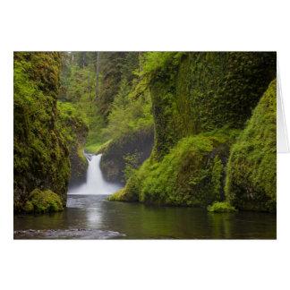USA, Eagle Creek, Columbia Gorge, Oregon. 3 Card