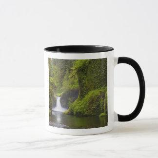 USA, Eagle Creek, Columbia Gorge, Oregon. 3 Mug