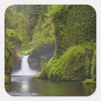 USA, Eagle Creek, Columbia Gorge, Oregon. 3 Square Sticker