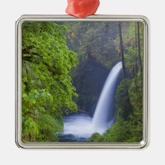 USA, Eagle Creek, Columbia Gorge, Oregon. Christmas Tree Ornaments
