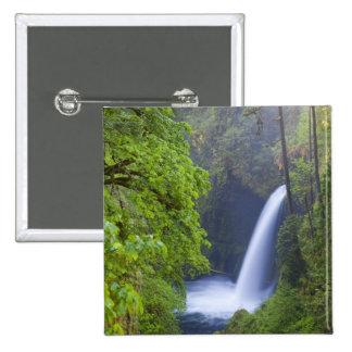 USA, Eagle Creek, Columbia Gorge, Oregon. Pinback Button