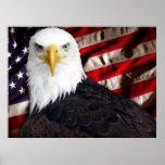 USA Eagle Patriotic Poster