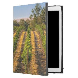 USA, Eastern Washington, Walla Walla Vineyards iPad Pro Case