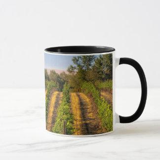 USA, Eastern Washington, Walla Walla Vineyards Mug