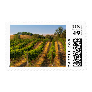 USA, Eastern Washington, Walla Walla Vineyards Postage