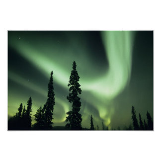 USA, Fairbanks area, Central Alaska, Aurora 2 Poster