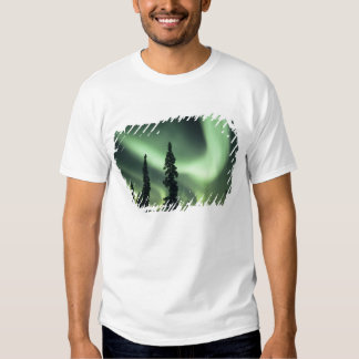 USA, Fairbanks area, Central Alaska, Aurora 2 Shirt