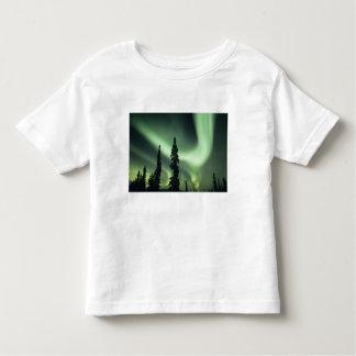 USA, Fairbanks area, Central Alaska, Aurora 2 T-shirt