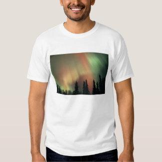 USA, Fairbanks area, Central Alaska, Aurora 3 Shirt