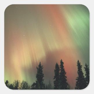 USA, Fairbanks area, Central Alaska, Aurora 3 Square Sticker