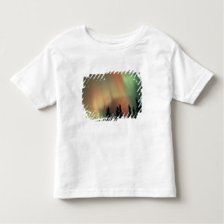 USA, Fairbanks area, Central Alaska, Aurora 3 T Shirt