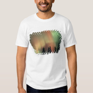 USA, Fairbanks area, Central Alaska, Aurora 3 T-shirt