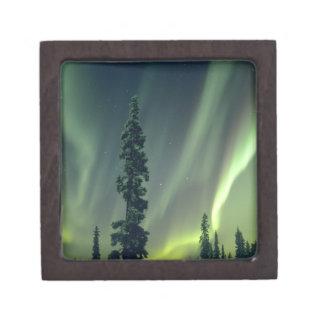 USA, Fairbanks area, Central Alaska, Aurora Keepsake Box