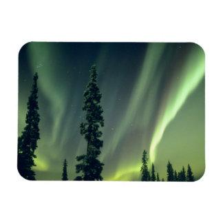 USA, Fairbanks area, Central Alaska, Aurora Magnet