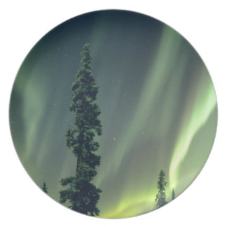 USA, Fairbanks area, Central Alaska, Aurora Plate