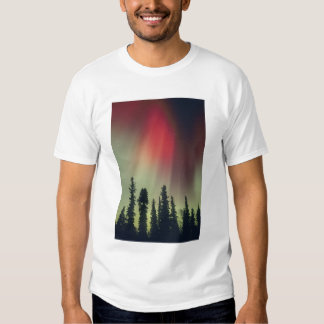 USA, Fairbanks area, Central Alaska, Aurora T Shirt