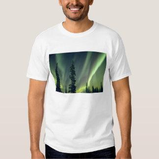 USA, Fairbanks area, Central Alaska, Aurora Tee Shirt