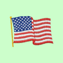 USA Flag Embroidered Shirt