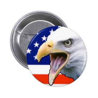 USA Flag and Eagle Pinback Button