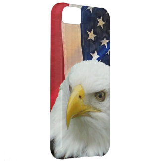 USA Flag and Proud Patriotic Bald Eagle Cover For iPhone 5C