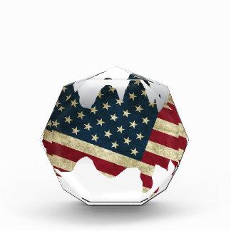 USA Flag Award