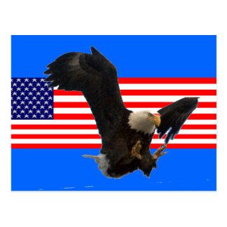 USA FLAG EAGLE POSTCARD