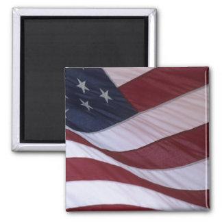 USA flag, North Carolina, USA Magnet