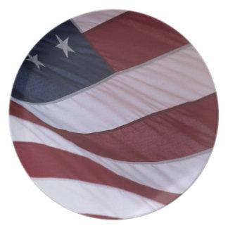 USA flag, North Carolina, USA Party Plate