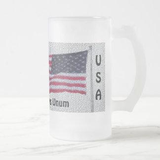 USA Flag Pluribus Unum Frosted Mug