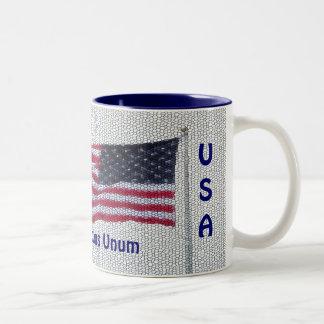 USA Flag Pluribus Unum Two Color Mug